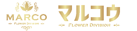MARCO-FLOWER DIVISION-